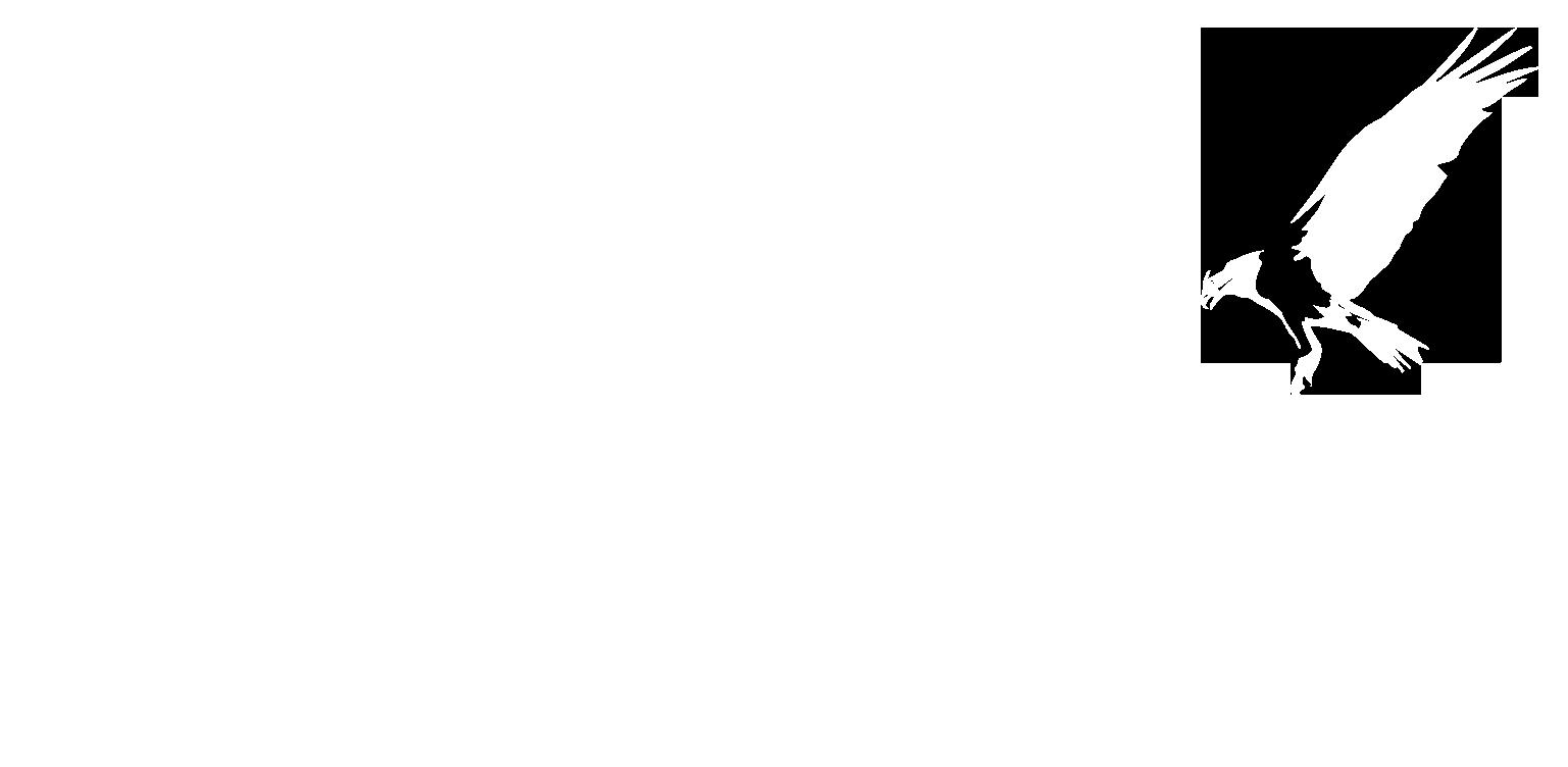 www.kaliogayo.nl