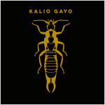 t-shirt-oorworm-kaliogayo